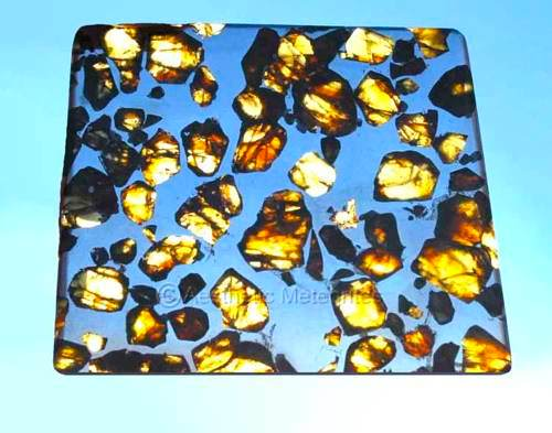Photo of an exceptional Esquel Pallasite
